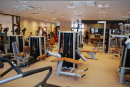 Fit-forma Stdi Sopron