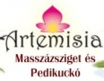 Artemisia Masszzs Sziget